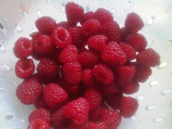 Two boxes of fresh Raspberries