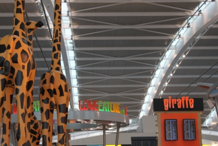 Giraffe Terminal 5